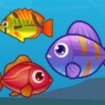 Big Fish Eat Small Fish 2