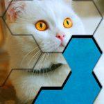 Blocks Hexa Jigsaw Puzzle™