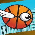 Crazy Flying Basketball